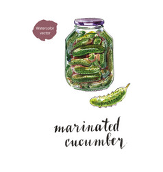 Glass jar of marinated cucumbers vector