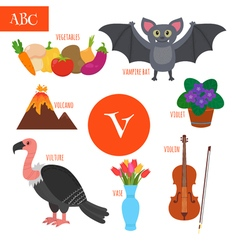 Letter V Cartoon alphabet for children Violin vector image vector image