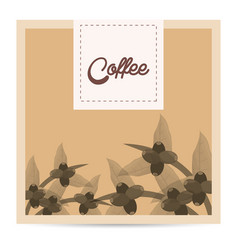 coffee tree beans nature poster vector image