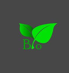 bio vector image vector image