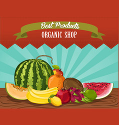 Organic shop poster with fresh fruit vector