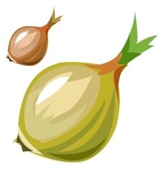 Ripe delicious onion closeup in cartoon style vector