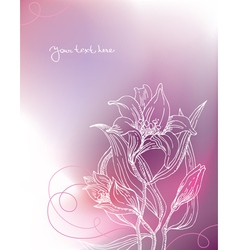 Background with lily flowers vector