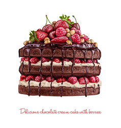 Yummy chocolate creamy cake with berries vector