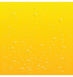 background glass of beer with drops of drink vector image
