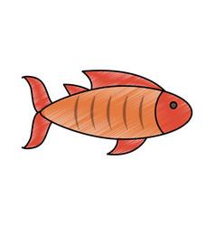 delicious fresh fish vector image vector image