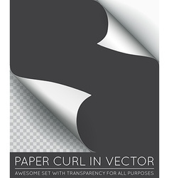 Paper page curl with shadow isolated vector