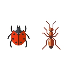 Insect ladybug and ant icon flat set isolated on vector