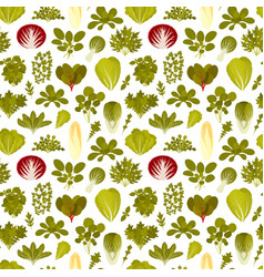 Seamless pattern with green salad plants food vector