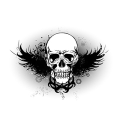 Skull with wing vector