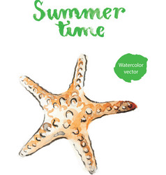 Watercolor starfish vector
