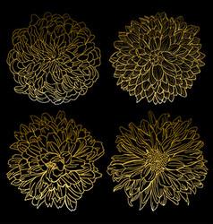 Golden chrysanthemums set vector