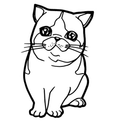 Coloring book with cat vector