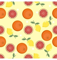 Citrus pattern fruit background summer bright vector