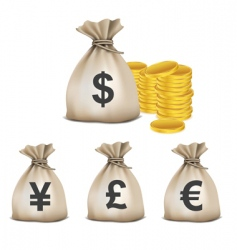 currency bags with coins vector image