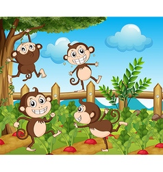 Four monkeys in the vegetable garden vector image vector image