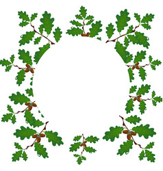 Green branches of an oak with acorns on a circle vector