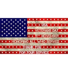 Veterans day flag vector