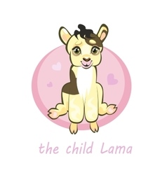 Sweetie baby llamas newborn sitting vector