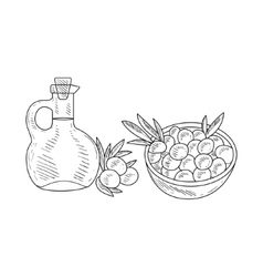 Olives and jug of olive oil hand drawn realistic vector