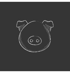 Pig head drawn in chalk icon vector
