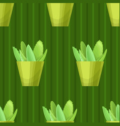 Seamless pattern with succulent vector