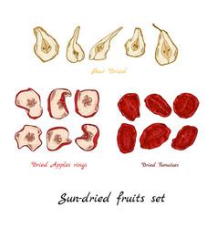 Sun-dried fruit vector