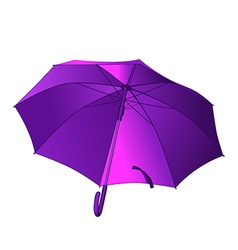 Violet umbrella vector