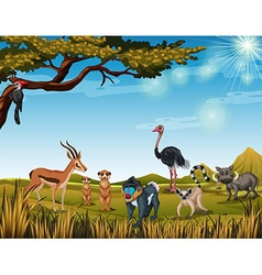 Animals in the open safari vector image