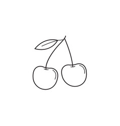 cherry line icon healthy fruit graphics vector image