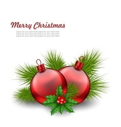 Christmas Red Glass Balls with Fir Twigs and Holly vector image vector image
