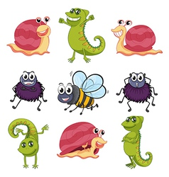 Animals and insects vector image