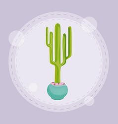 Cactus in pot design vector