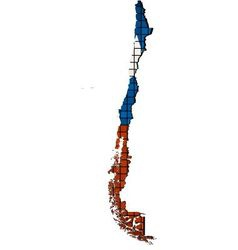 Chile map with flag inside vector