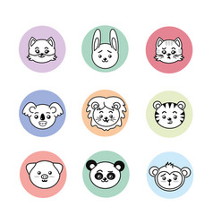 Set cute and tender animals with expressions vector