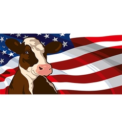 Cow and usa flag vector
