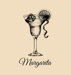 Margarita glass isolatedhand drawn sketch of vector