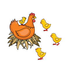 Flat hand drawn chicken in nest chicks set vector