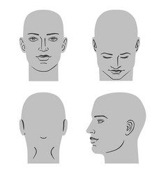 man hairstyle head set vector image vector image