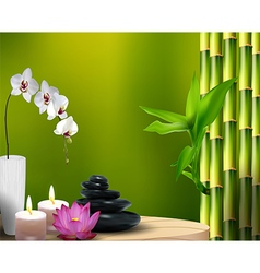 Bamboo with flower and stone wax on the table vector