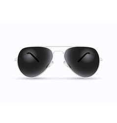 Pilot sunglasses vector