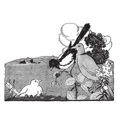 White blackbird vintage vector
