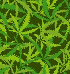 Cannabis leafs seamless pattern background of vector