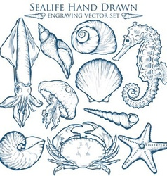 Hand drawn sealife set vector