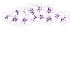 Top frame bouquet sakura blue flowers vector