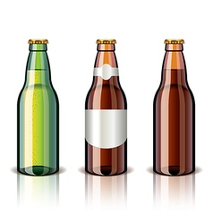 Object beer bottles vector