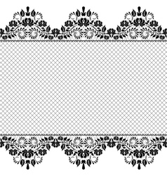 Background with lace and net vector image vector image