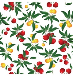 cherry seamless background vector image vector image