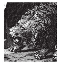 Head of roaring lion vintage vector