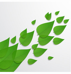The leaves background vector